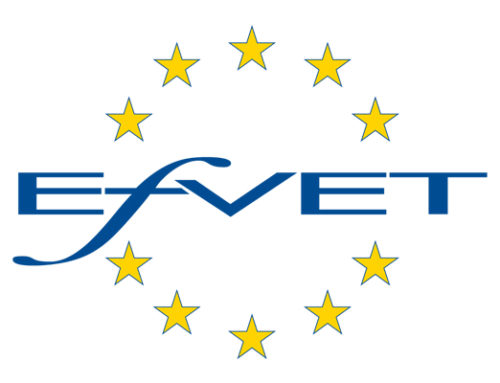 Intervet (Internationalisation of VET systems in Western Balkans)