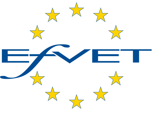 VET to VET – Capacity Building in Western Balkans – V2V